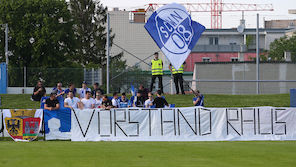 Wr. Neustadt legt Protest gegen Lizenzentzug ein