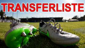 Bundesliga: LAOLA1-Transferliste