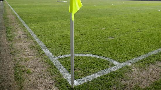 Rasenqualität in der Bundesliga nimmt ab