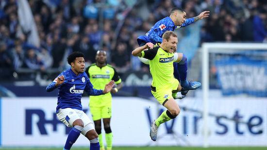 Schalke patzt gegen Schlusslicht Paderborn