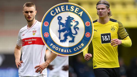 FC Chelsea: Kalajdzic statt Haaland?