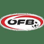 Fußball - ÖFB-Team